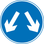 regulatory-signs - pass either side