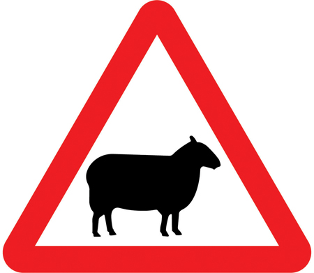 warning-signs - sheep